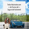 Índice de precios del seguro del automóvil