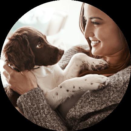 El mejor seguro para tu perro, tu gato y otras mascotas - Rastreator.com