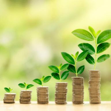 Las mejores opciones para invertir tu dinero