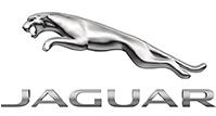 Asegurar Jaguar